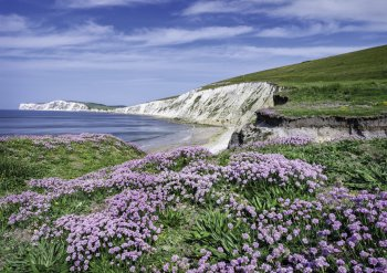 Küste der Isle of Wight © chris-fotolia.com